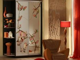 Шкаф купе витражный рисунок на матовом стекле